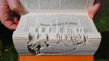 Permalien vers:Livres sculptés